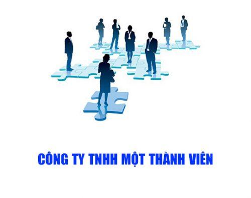 Điều lệ công ty TNHH 1 thành viên